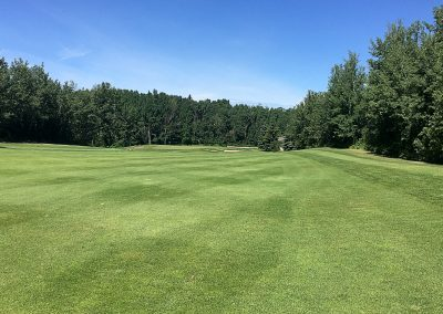 InnisfailGolfClub_Hazelwood7_fairway2