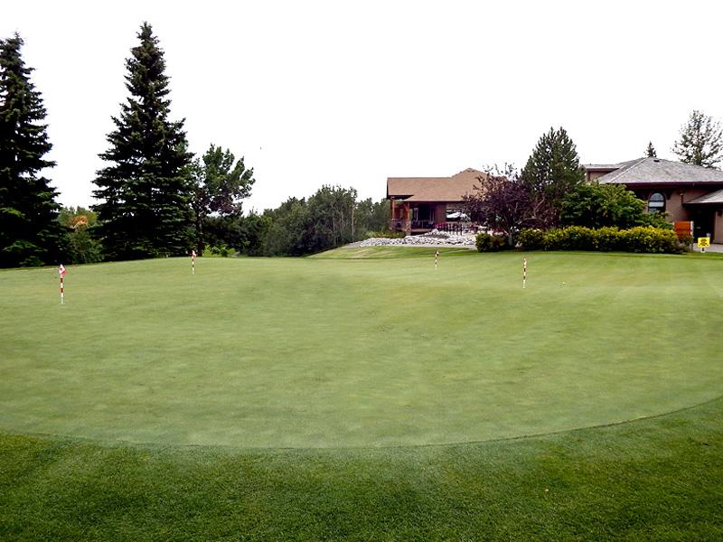 Innisfail Golf Club - Facilities - Putting Green - Innisfail, Alberta